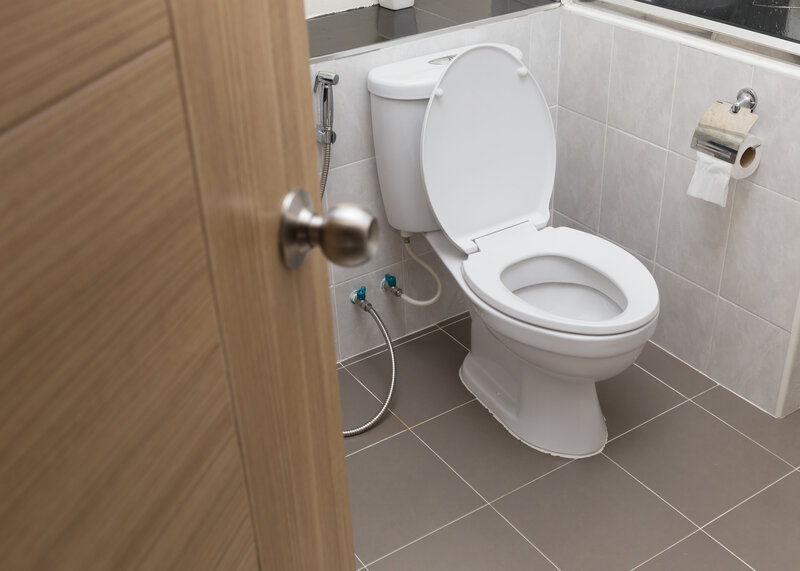 Toilet Inspection Beaumont
